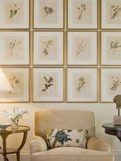 flowers creates, botanical flowers, diy botanical artwork, garden's flowers, botanical frame's, botanical display, vintage botanical prints, diy wall art, ...