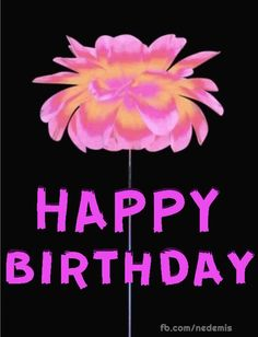 Happy flowers picture with birthday birthday messages Floral picture with birthday message Happy Birthday Flowers Gif, Happy Birthday Flowers Wishes, Happy Birthday Greetings Friends, Happy Birthday Cake Images, Happy Birthday Video, Happy Birthday Celebration, Birthday Wishes Messages, Happy Birthday Gifts, Happy Birthday Greeting Cards