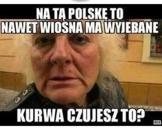 Polish Memes, Funny Cute, Funny Memes, Geek Stuff, Mood, Humor, Funny Stuff, Polish, Geek Things