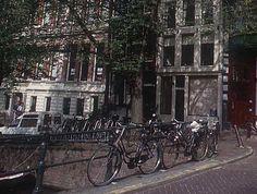 Bicilette ammassate sui canali di Amsterdam