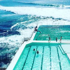 "THE NUTRITION COLLECTIVE (@thenutritioncollective) on Instagram: ""Morning swim - check ✔️"""