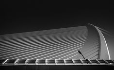 "Title ""Tension"" Valencia Spain Calatrava Architecture Fine Art Photography B&W Post Processing Black and White Long Exposure Nikon Zeiss Valencia Spain, Fine Art Photography, Underwater, Black And White, Architecture, Building, Vulture, Labs, Arquitetura"