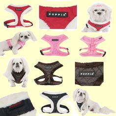 New Diamond (winter) harness from Puppia! Diamond Quilt, Quilt Patterns, Dog Cat, Fur, Colours, Pets, Medium, Brown, Winter