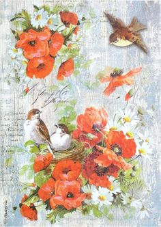 Rice Paper for Decoupage, Scrapbook Sheet, Craft Paper Poppy and Birds