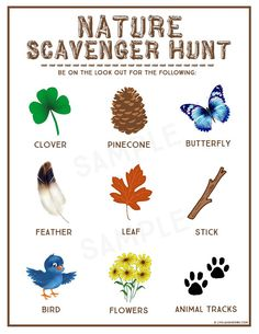 Nature Scavenger Hunt Free Printable, summer vacation i spy printable, feather pencil/pen craft