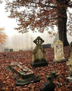"pumpkinwishbones: "" ominousplaces: "" Foggy morning, by nannamanson. "" 🍁🍎🌽 autumn/halloween all year 🎃🍂👻 "" Cemetery Headstones, Old Cemeteries, Cemetery Art, Graveyards, Plaques Funéraires, Steinmetz, Photo Souvenir, Foggy Morning, Autumn Aesthetic"