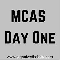 3/28 Blog post: MCAS Day One.