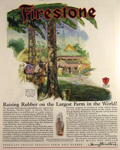 1928 Firestone Tire Ad ~ Rubber Farm in Liberia. Original vintage magazine print ad for Firestone Tires featuring a great Paul Gerding illustration of a native Liberian tabbing a rubber tree at the Firestone plantation. The colonists and their descendants, known as Americo-Liberians, led the political, social, cultural and economic sectors of the country and ruled the nation for over 130 years as a dominant minority.