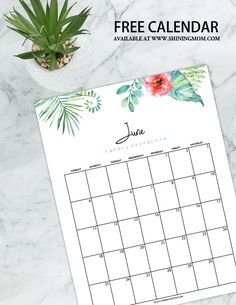 Select from a dozen of free printable June 2017 calendar! Family Calendar, Calendar 2017, Free Calendar, Calendar Design, Printable Planner, Free Printables, Create Your Own Planner, Custom Stationary, Household Binder