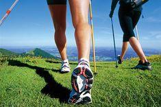 Nordic walking.  http://www.teamforitaly.com/nordic-walkig/ Oltre alla resistenza dei muscoli principali e del tronco superiore, c'è un aumento significativo della frequenza del battito cardiaco, un miglioramento della funzione vascolare e della efficienza dell'apporto di ossigeno, arrivando ad un'ottimizzazione dell' equilibrio e della stabilità.  di Cristina Fusari