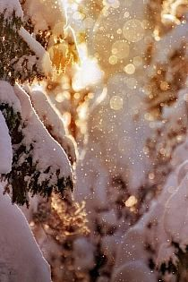 .Winter Glitz!