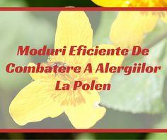 Alergiile la polen sunt unele dintre problemele alergice cele mai comune si pot pune un amortizor pe activitatile de primavara si de vara, dar exista o serie de ... Berries, Pune, Bury, Blackberry, Strawberries