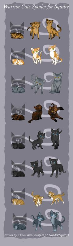 how to find your warrior cat name