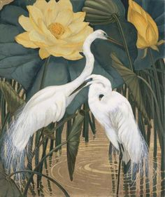 Egrets and Lotus - Jessie Arms Botke