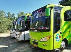 Sewa Bus Pariwisata Jogja Seat 25