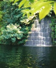 Tenino Swimming Hole. Went a couple summers ago. Lots of fun!