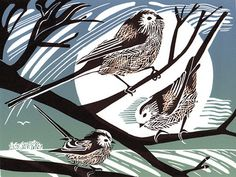 Long-Tailed Tits by Pam Grimmond
