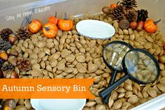 Autumn is a wonderful time of year for preschoolers, and out come new autumn sensory bins. This sensory bin offers a new and unique filler that comes with its own natural fragrance. - Stay At Home Educator