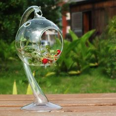 New Fashion Clear Glass Round With 1 Hole Flower Plant Hanging Vase Hydroponic Container Office Wedding Décor Without Stand. Starting at $1