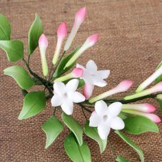 Summer Gumpaste Jasmine Sugarflower Spray cake topper perfect for cake decorating fondant cakes & wedding cakes. Sugar Paste Flowers, Icing Flowers, Fondant Flowers, Paper Flowers, Church Wedding Flowers, Wedding Cake Fresh Flowers, Wedding Cakes, Wedding Ceremony, Flower Spray