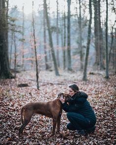Besondere Momente mit treuen Weggefährten festhalten 🦮💛 . . . #topaustriaphoto #uppermoments #upperaustria #oberösterreich #ig_austria #weloveaustria #1000thingsinaustria #igersaustria #discoveraustria #visitaustria #loves_austria #dogstagram #hundeliebe #doglove #dogoftheday #dogphotography #dogsofinstagram #doglover #wanderlust #roamtheplanet #hundefotografie #artofvisuals #agameoftones #welivetoexplore #worldprime #hundeportrait #exklusive_shot #hundefoto #fatalframes #moodygrams… Portrait, Wanderlust, Couple Photos, Instagram, Couple Shots, Headshot Photography, Portrait Paintings, Couple Photography, Drawings