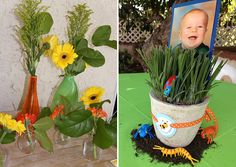Love the photo of the birthday boy or girl in a pot of grass with plastic bugs, Oreo dirt and a cupcake printable tied around the pot to keep with the theme. 3rd Birthday Parties, Baby Birthday, Birthday Bash, Bright Color Schemes, Jungle Theme, First Birthdays, Party Time, Boy Or Girl, Thing 1