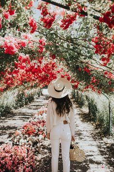 Glorious Enjoy Life With Your Own Flower Garden Beautiful Easy Ideas. Enjoy Life With Your Own Flower Garden Beautiful Easy Ideas. No Rain, Foto Pose, Beautiful Flowers, Red Flowers, Red Roses, Flora Flowers, Beautiful Places, Planting Flowers, Bloom