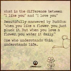 """Do you """"like"""" or do you """"Love""""? When you Love someone you give the most precious you have: you. You give your time, your support, your presence, your interest, your happiness... http://www.judithmcosta.com/blog/do-you-know-what-true-love-is (Image originally shared by The Mind Unleashed)"""