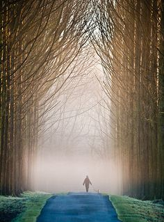 Walking the dog through a winter morning mist ... Tanworth-in-Arden, England | by Tony Cornish on Flickr