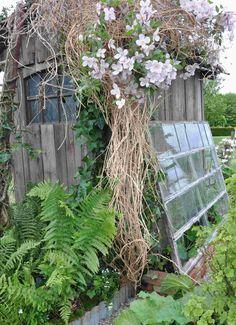 serre de jardin créative et originale en vieille fenêtre recyclée et adossée à l'abri de jardin