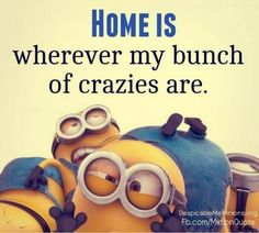 OK so here are some really funny quotes from one of my favorite characters ever the MINIONS The best thing i love about them is how they want to stay in flock and tease each other. Then the stupid … Really Funny Quotes, Sunday Quotes Funny, Funny Sayings, Minions Images, Minions Love, Minion Talk, Minions 2014, Minion Jokes, Minions Quotes