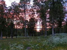 In Svezia verso Capo Nord: l'intimità di un viaggio in moto