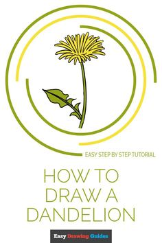 Flower Drawing Tutorials, Drawing Tutorials For Beginners, Drawing Tips, Drawing Ideas, Learn Drawing, Drawing Techniques, Dandelion Drawing, Plant Drawing, Dandelion Flower