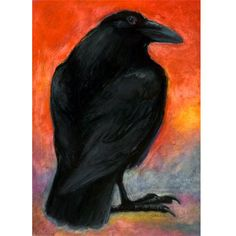 Crows and ravens inspire me.