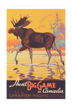 Canada Travel Poster, Moose Art Print at AllPosters.com