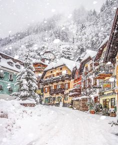 Photo via @christmas.joy.is.here Snow Scenes, Winter Scenes, Places To Travel, Places To Visit, Le Petit Champlain, Hallstatt, Destinations, Winter Magic, Winter Snow
