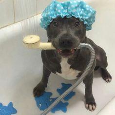 Bath Time Mom!