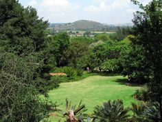 The Pretoria Botanical Garden