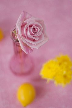 pink rose and lemon