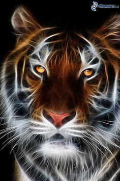 tigre fractal