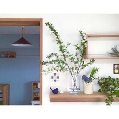 女性で、3LDKのこどもと暮らす。/子供部屋/和室を改造/押入れ改造/セルフペイント/DIY…などについてのインテリア実例を紹介。(この写真は 2015-07-24 20:24:24 に共有されました) Flower Vases, Flower Arrangements, Cafe Design, House Design, Bookcase Shelves, Bookcases, Home And Living, Living Room, Green Life