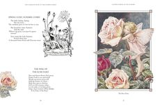Excerpt from The Complete Book of the Flower Fairies by Cicely Mary Barker (published by Penguin)