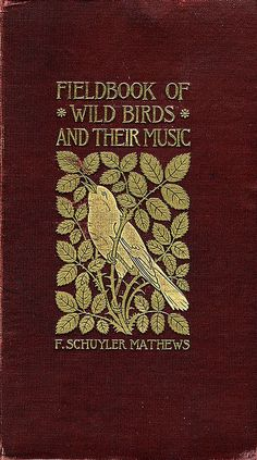 "lost-in-centuries-long-gone: ""'Field book of wild birds and their music' by F. Schuyler Matthews; New York, 1907 http://www.sil.si.edu/ """