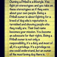 Pitbull Owner