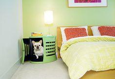 Seu cãozinho adora dormir em cima da cama? Arruma uma casinha para ele, mas pertinho de você. Este criado-mudo da marca americana DenHaus é perfeito para mantê-lo por perto  Reprodução / www.denhaus.com