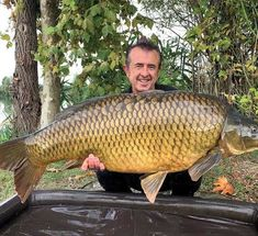 Carp Fishing Tips, Fishing Knots, 7 Fishes, Below The Surface, Bait, Carp Rigs, Dish, It Cast, Things To Come