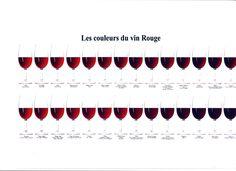 Les  couleurs de vin rouge