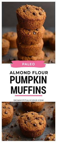 Paleo Almond Flour Pumpkin Muffins spiced with fall flavors and lightly sweetened. These muffins are soft, fluffy, quick to make and delicious! Paleo Pumpkin Muffins, Almond Flour Muffins, Pumpkin Cream Cheese Muffins, Pumpkin Muffin Recipes, Pumpkin Chocolate Chip Muffins, Almond Flour Recipes, Coconut Recipes, Healthy Pumpkin, Pumpkin Pumpkin