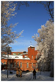 This photo from Western Finland, South is titled 'Bricks & Frost'. Dark Flowers, Victorian Gothic, Bricks, Winter Wonderland, Frost, 19th Century, Westerns, Cities, Country