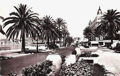Mid Century Cannes Photo Postcard La Croisette Promenade Vintage Cars B&W